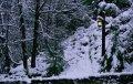Почему в холод мы больше подвержены негативным эмоциям?