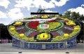 Цветочные часы Кривого Рога попали в Книгу рекордов Украины